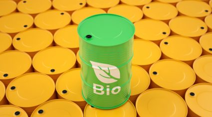 Ireland forced to import 84% of biofuel needed