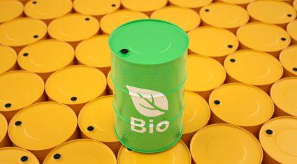 IFA grain chairman welcomes key biofuels vote delay