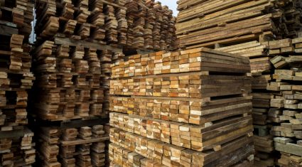 Talking timber, top selling tips for forest owners
