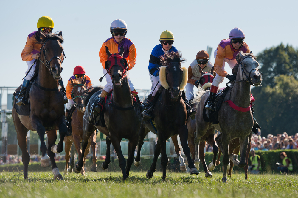 horse-racing agriland