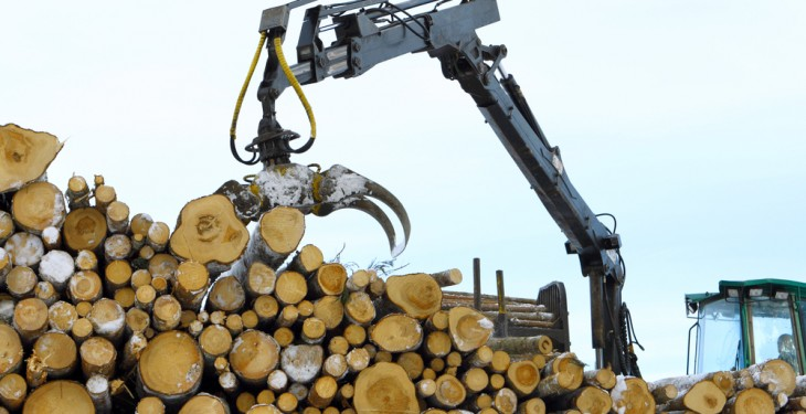 Talking Timber: Where Forest Owners meet Timber Buyers