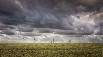 1,000 farmers sign Midlands wind farm contracts, committee hears