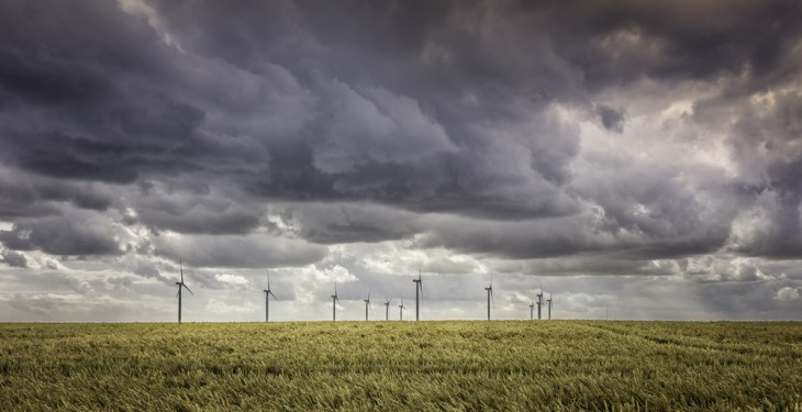 Calls for wind farm impact survey