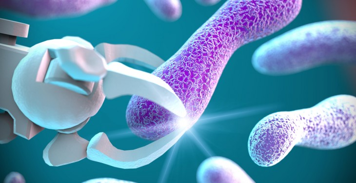 Calls for key national antibiotic database