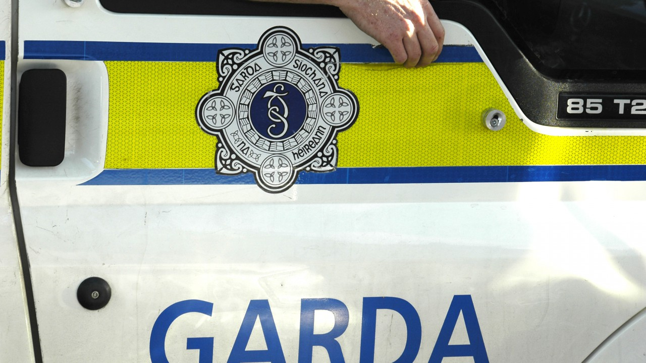 Roscommon Gardai appeal for information on stolen cattle