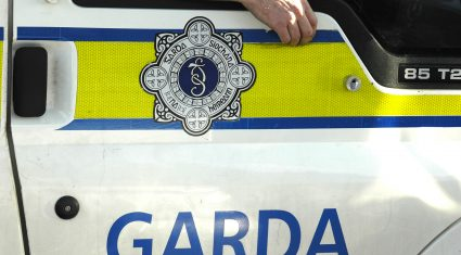 Latest anti-crime farm advice from the gardai
