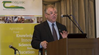 2016 looks set to be a good year for sheep farmers – Teagasc Director