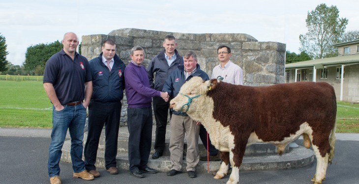 ABP/Irish Hereford Prime presentation
