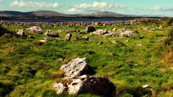 Farming traditions in the Burren to be celebrated