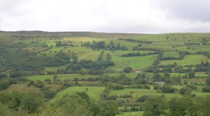 Young farmer reforms drive land rent as high as €300/ac