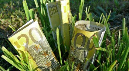 Farm cash flows on the up
