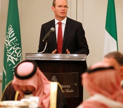 ICMSA will seek Coveney's intervention in TLT affair