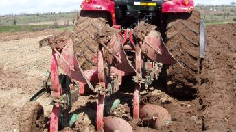 Irish tillage area dropped by 10,000ha in 2017