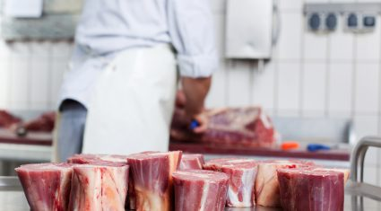 Fees payable for slaughtering/live exporting animals
