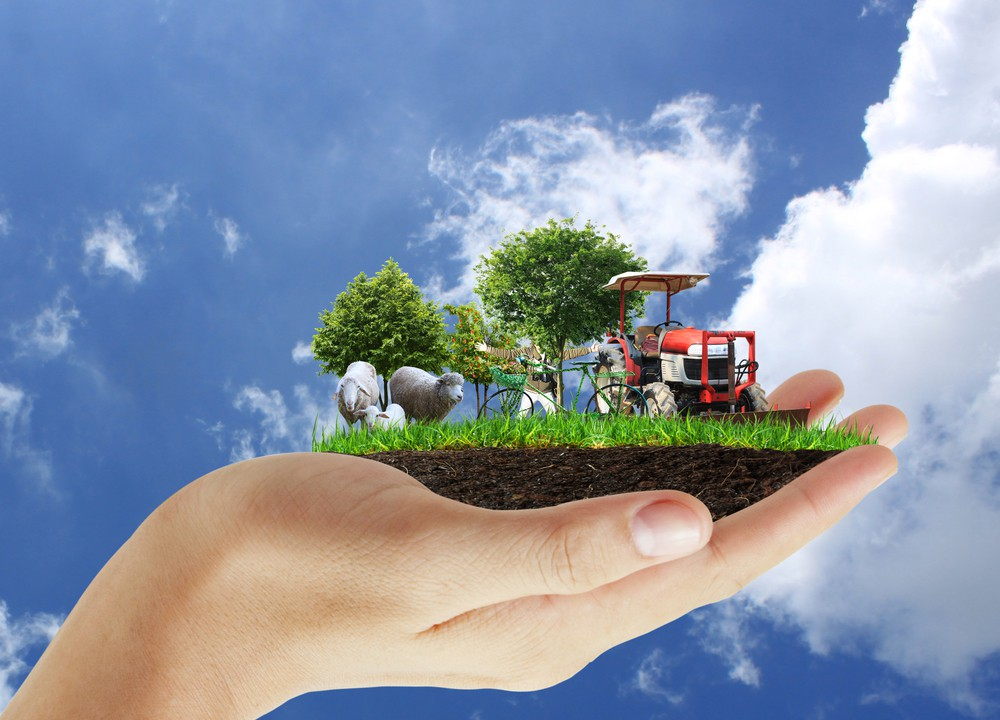 Greening of direct payment, on-the-farm outline by EU agri expert