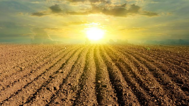 Carbon neutrality should be feasible for many Irish tillage farmers