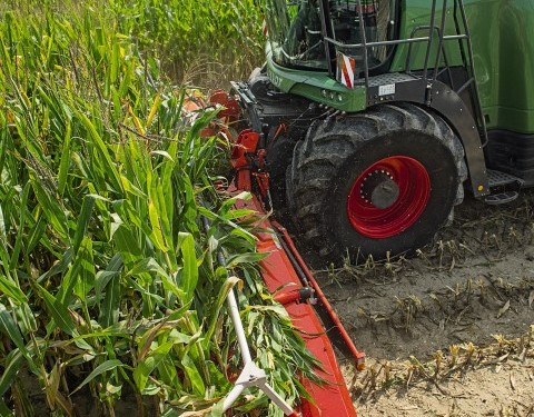 Fendt predict a record year