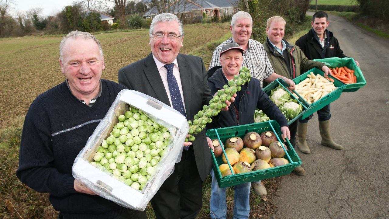 Vegetable growers hopeful prices hold for Christmas