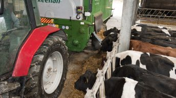 Farmer input costs 'surging' while output prices 'fall or remain constant'