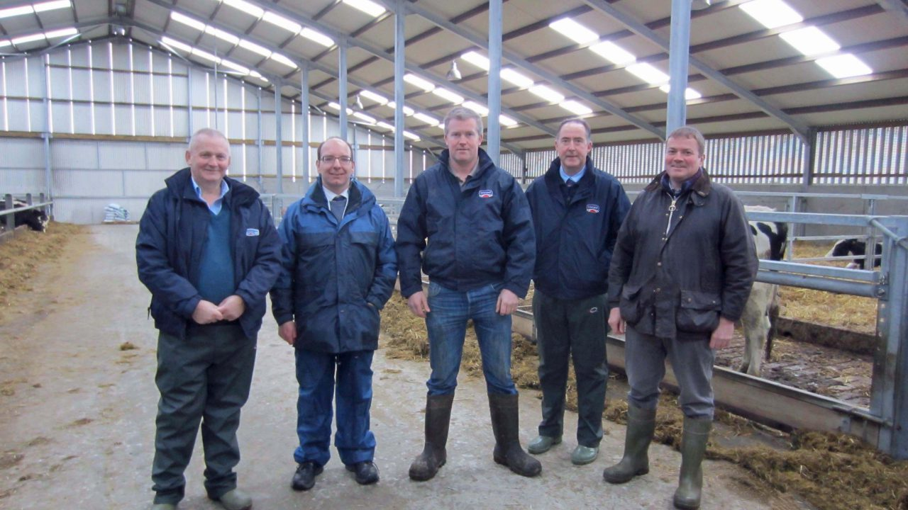 Farm walk on rearing dairy heifers