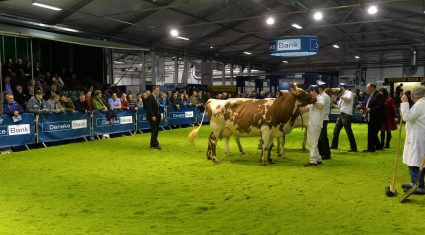 Irish farmers miss out on free tickets to Livestock Event