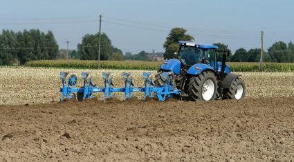 Cereal prices to remain static in 2014 – Teagasc