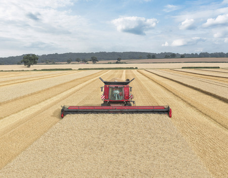 World's largest header features at LAMMA
