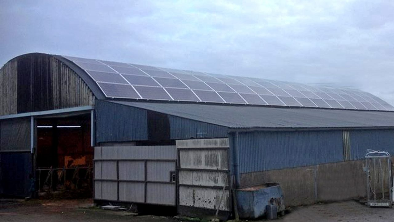 Electricity – a good dairy investment for the future