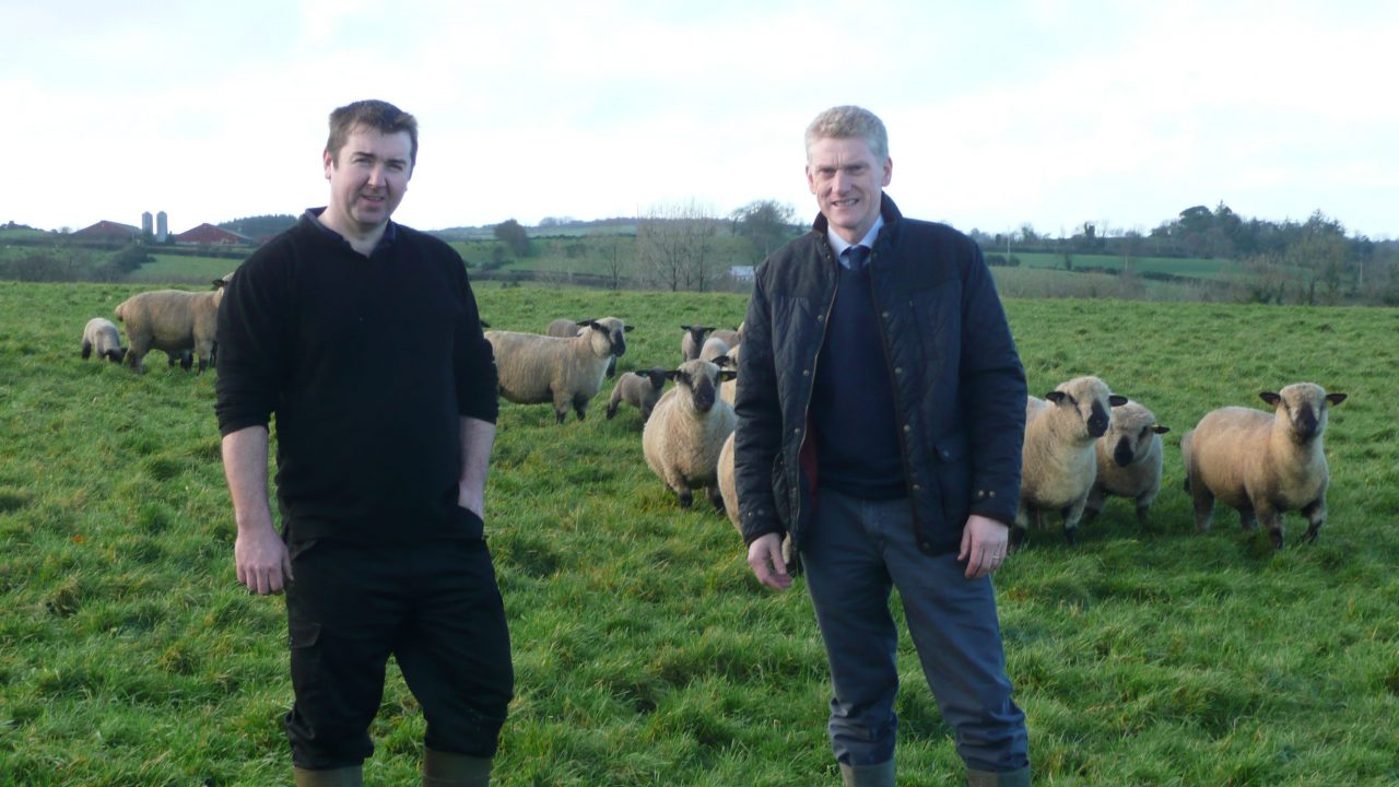 Lambing gets off to a great start