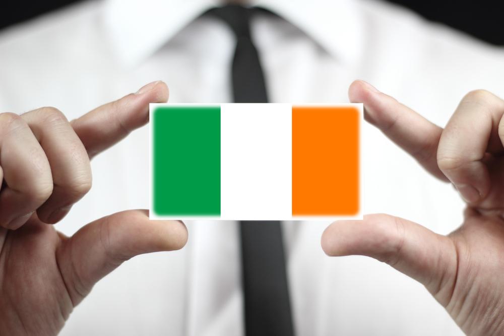 Top companies represented on new Irish consumer foods group