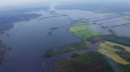 Unprecedented weather as Dept outlines flooded farmland implications