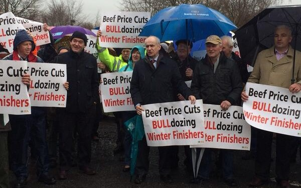 Coveney must act on cattle prices, IFA