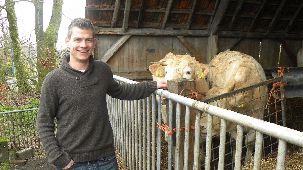 Diversification makes Dutch organic beef farm sustainable