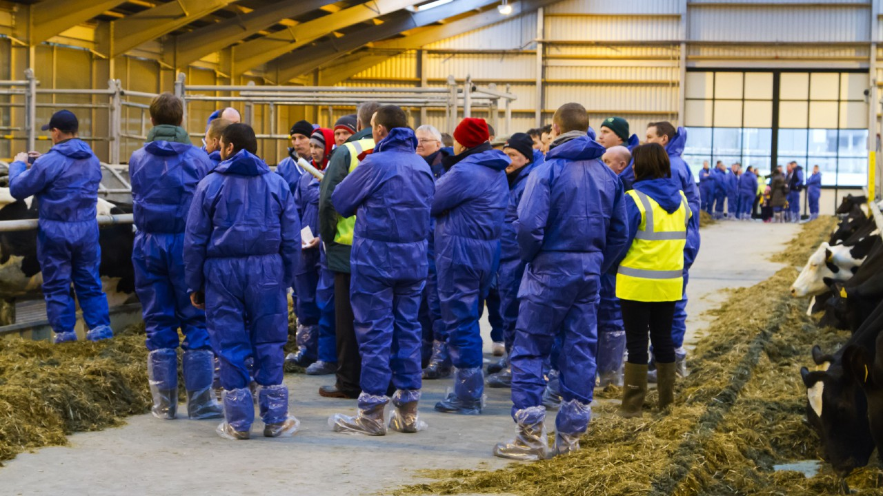 900 farmers attend dairy unit training