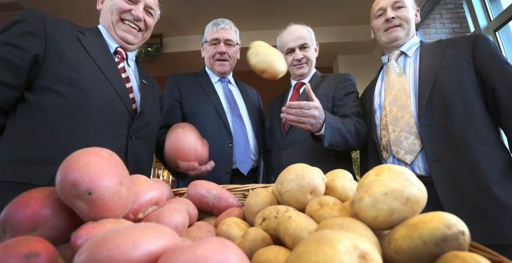 Potato promotion plans under way to combat market volatility