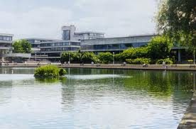 UCD in world top 100 universities for agriculture and forestry