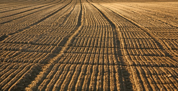 Farmer attitudes on soil fertility and analysis