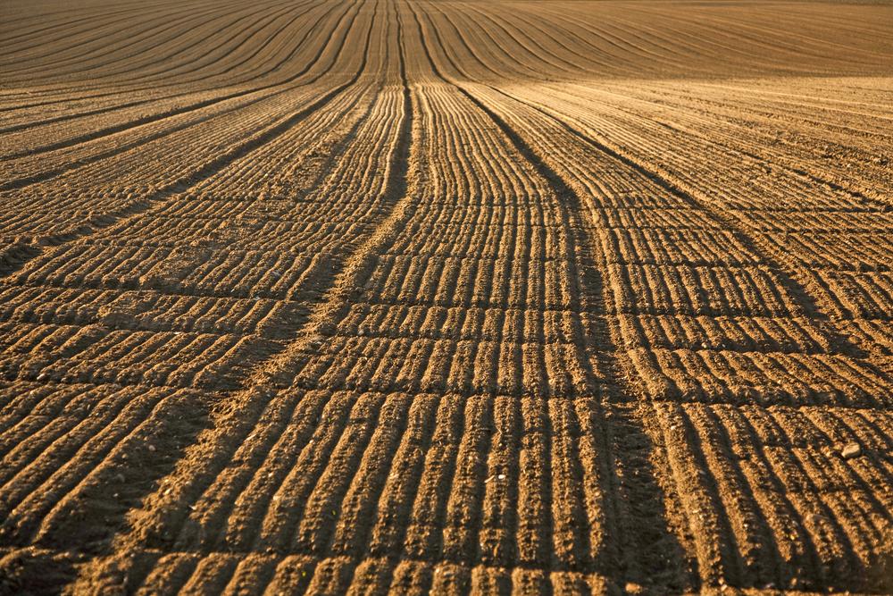 Farmer attitudes on soil fertility and analysis