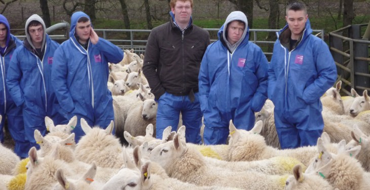 Great Scott! Farm business tour for agri students