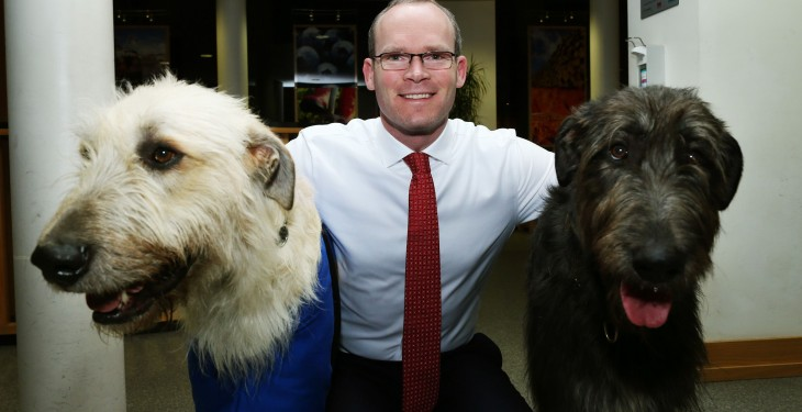 Coveney announces animal welfare conference
