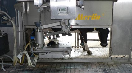 'Economic viability key to the success of automatic milking '