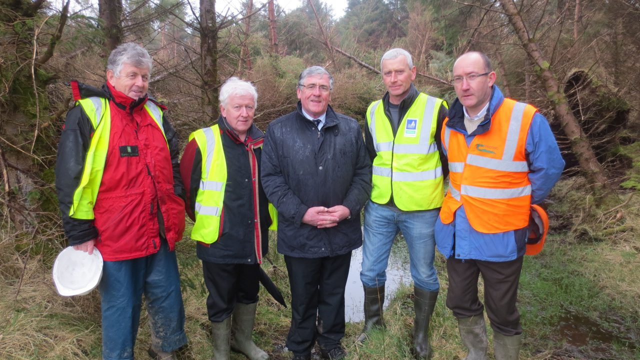 Hayes urges forest owners to attend windblow events