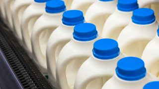 'Ireland falling down milk price league'