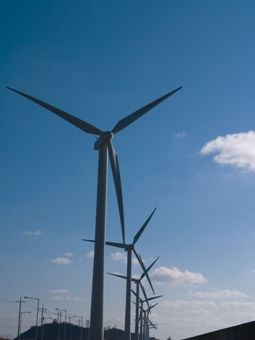 Wind energy could save Ireland €700 million a year, new report claims