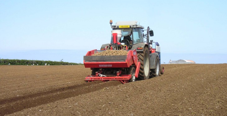 Limiting soil compaction key to success with potatoes