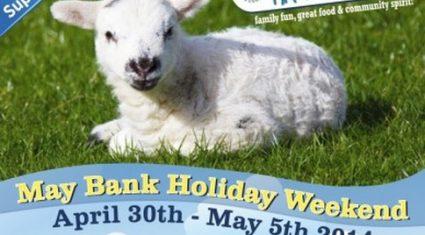 Roscommon sheep dog trials