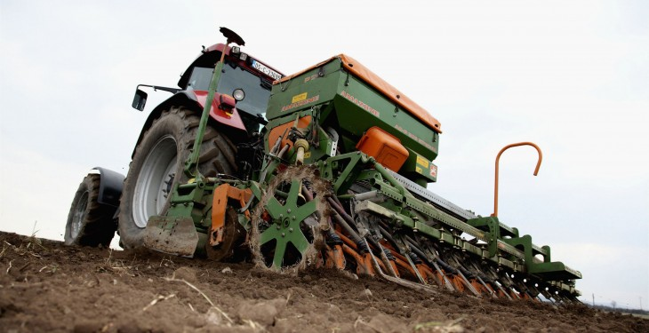 Seed prices down 8% for 2015 crops