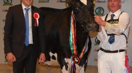 Emerald Expo Results – 2014