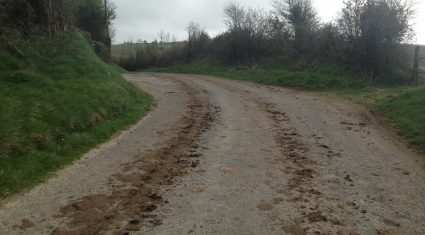 Water charges, roads and broadband are key issues for rural Ireland – IFA