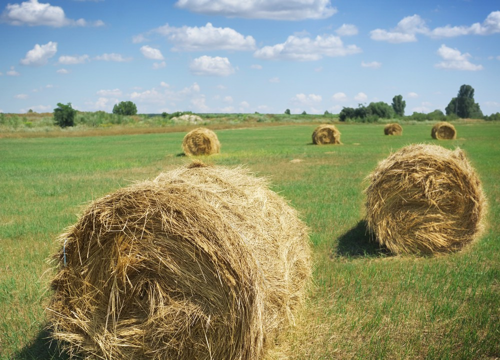 New farm partnership register set to be signed off by mid-summer